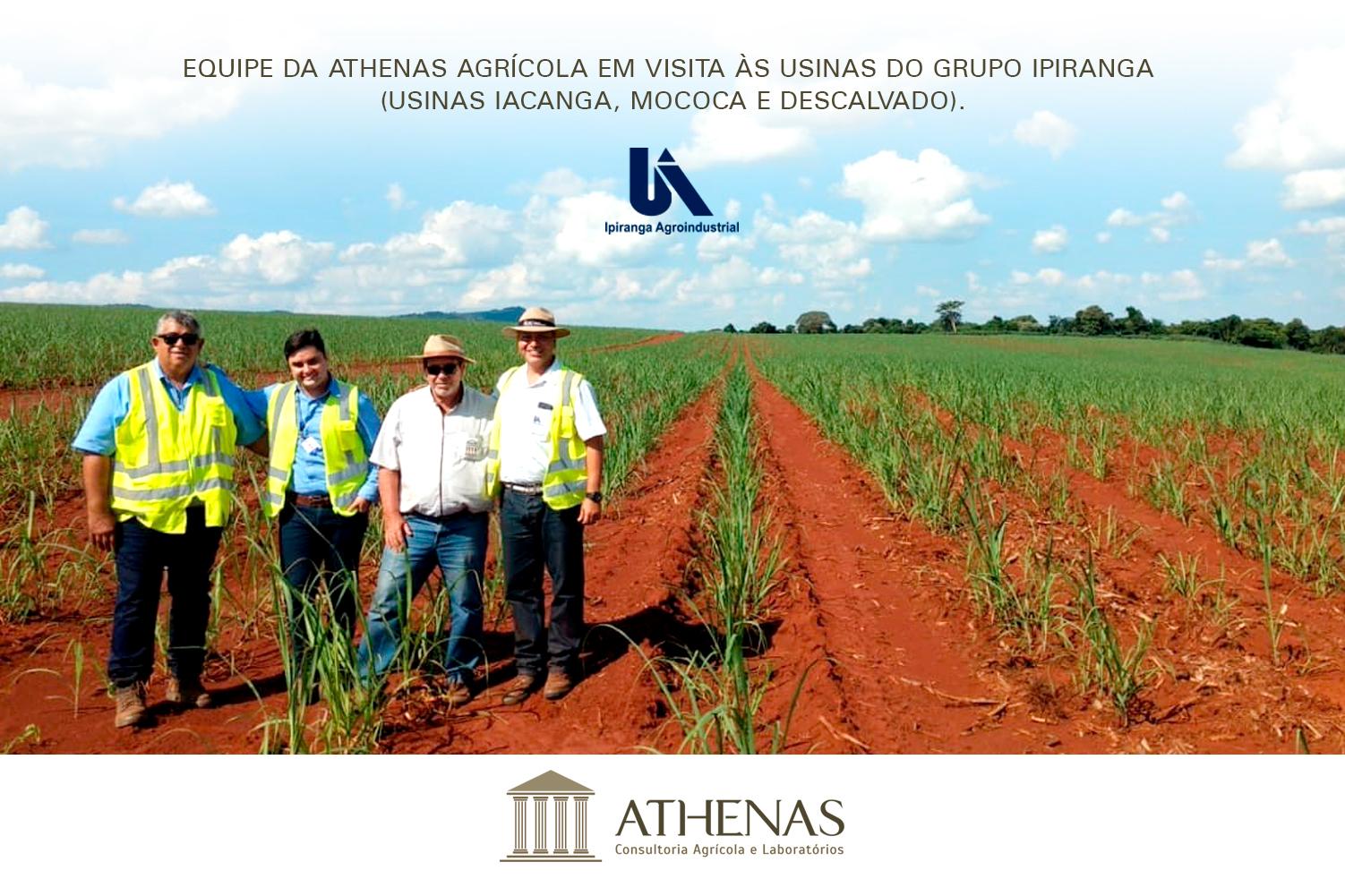 Equipe Athenas realiza visita técnica às Usinas do Grupo Ipiranga