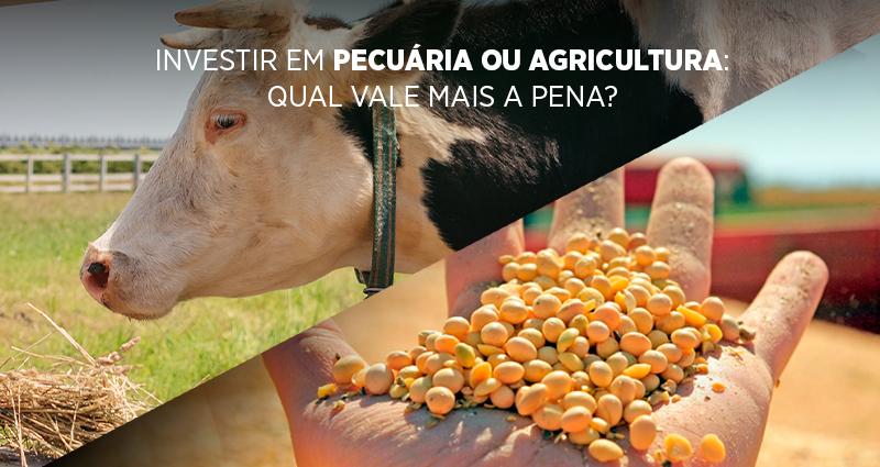 Investir em pecuária ou agricultura: qual vale mais a pena?