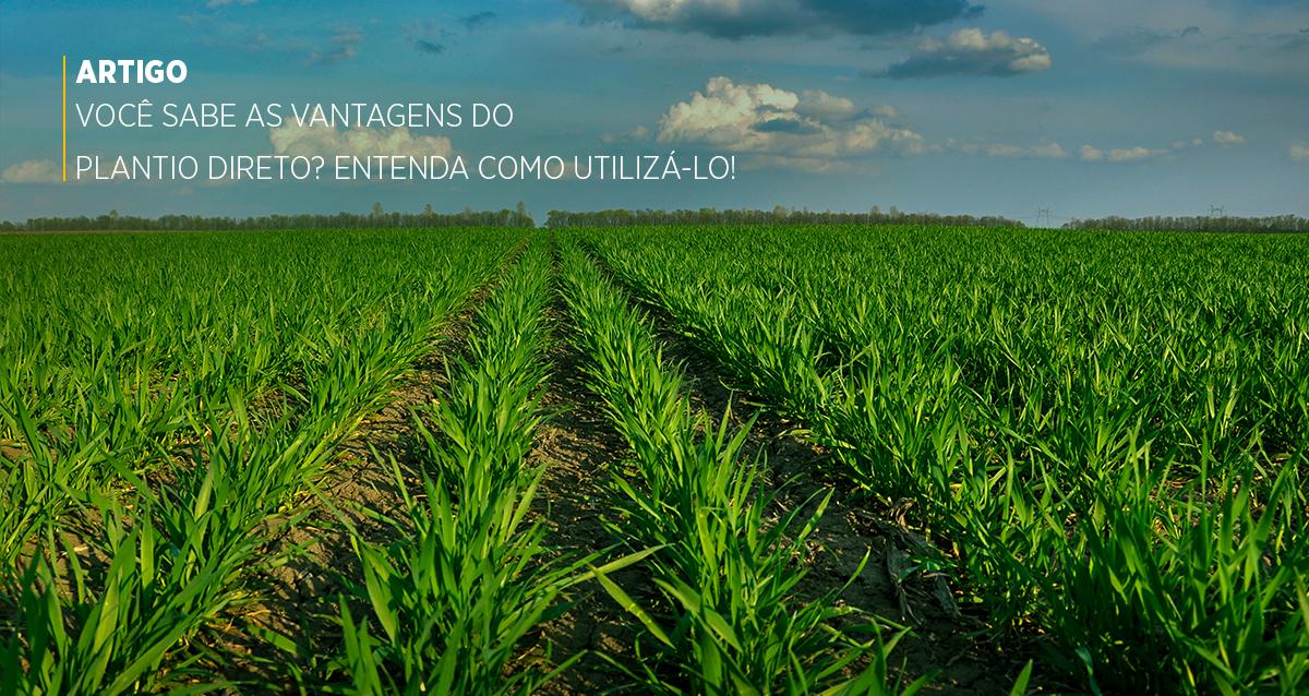Você sabe as vantagens do Plantio Direto? Entenda como utilizá-lo!