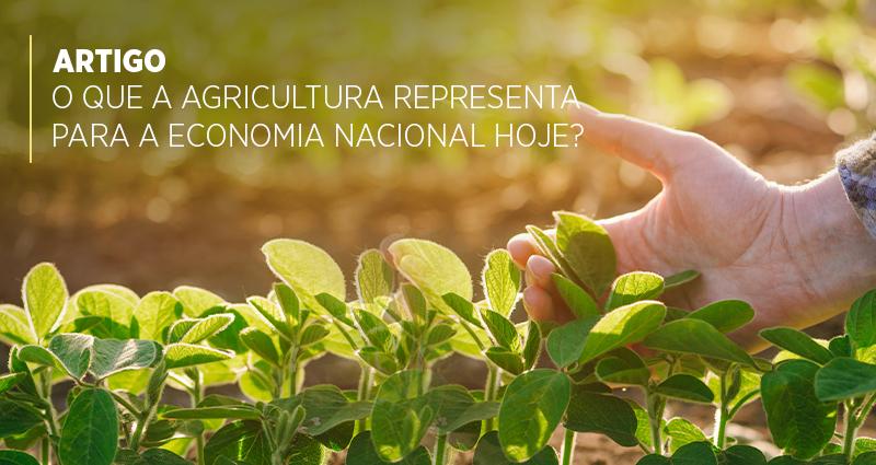 O que a Agricultura representa para a economia nacional hoje?